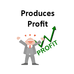Does Your Website Produce Profit?