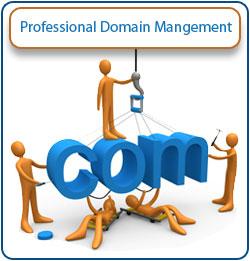 Professional Domain Name Mangement
